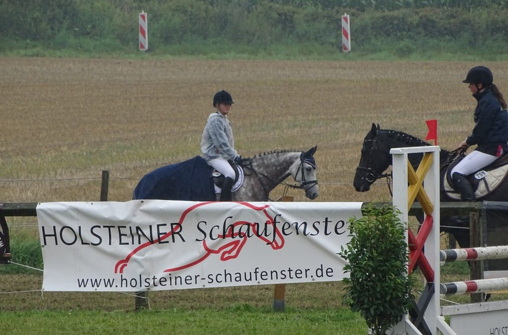 """HS-Workshop """"Turniersport""""   Dienstag, den 24. September 2019 um 19.30 Uhr im Hotel u. Restaurant Hansen in Rendsburg"""